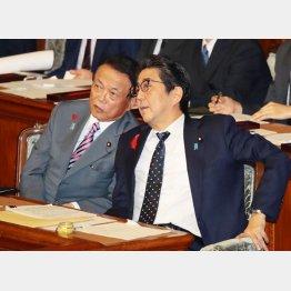 安倍首相(右)と麻生財務相(C)日刊ゲンダイ