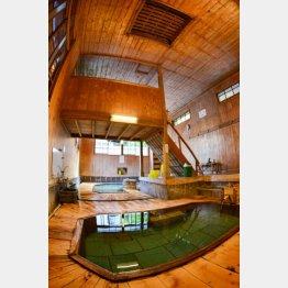湯船は階段を下りた所に(C)日刊ゲンダイ