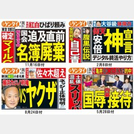 【2019年 突き刺さった見出し厳選5本】その他4本(C)日刊ゲンダイ