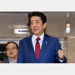 過去3回とも政権交代(C)日刊ゲンダイ