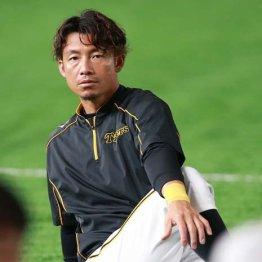 「辞める」発言も…鳥谷敬の現役引退が現実味を帯びてきた