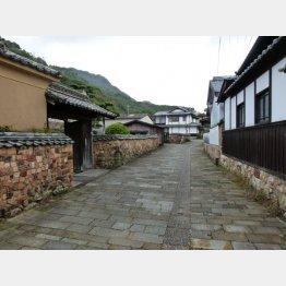 トンバイ塀に囲まれた家屋(C)日刊ゲンダイ
