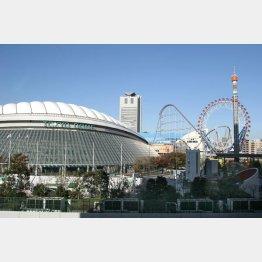 東京ドームを優待で楽しむ(C)日刊ゲンダイ