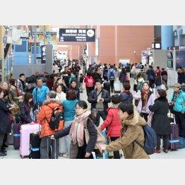 春節・旧正月の連休は、中国などから訪れる観光客が多い(C)共同通信社