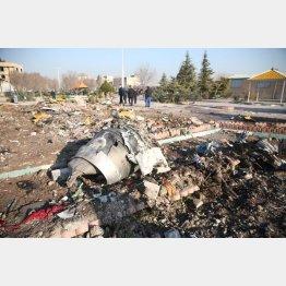 凄惨なウクライナ機墜落現場(C)ロイター/WANA (West Asia News Agency)