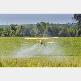 広大な土地では害虫・雑草駆除を飛行機で行う(C)123rf