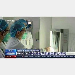 中国・湖北省の武漢市では死者も確認(C)ロイター/CCTV