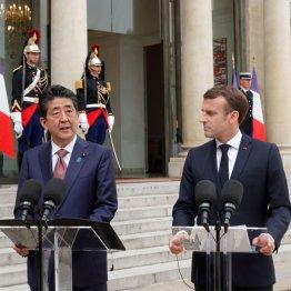 仏大統領 ゴーンの処遇めぐり安倍首相に何度も改善要請
