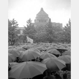 雨の中、人々は続々と集まってきた(1960年5月20日、国会前)/(C)ジャパンタイムズ/共同通信イメージズ