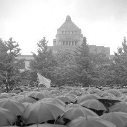 雨の中、人々は続々と集まってきた(1960年5月20日、国会前)/