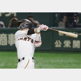 昨季、本塁打を放った際の坂本の振り切り(C)日刊ゲンダイ