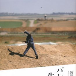 「パレスチナを生きる」渡辺丘著