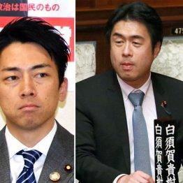 進次郎「次の総理」急落 不倫騒動と側近のIR疑惑がWパンチ