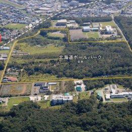 日本ハムの新球場名「エスコンフィールド北海道」に決定