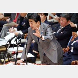 「募っているが『募集』はしていない」と安倍首相(C)日刊ゲンダイ