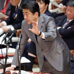 安倍首相の答弁「募ってるけど募集してない」に予算委騒然