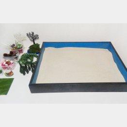 自作の箱庭治療セット(提供写真)