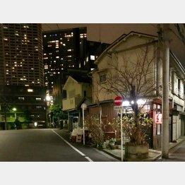 背後には新宿の高層ビル街が(C)日刊ゲンダイ