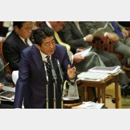 参院予算委で答弁する安倍首相(C)日刊ゲンダイ