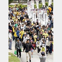 阪神キャンプのサイン会に列をつくるファン(C)共同通信社