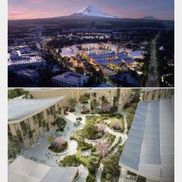トヨタ自動車が開発する次世代都市のイメージ(提供写真)