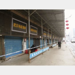 閉鎖が続く武漢の海鮮市場(C)共同通信社
