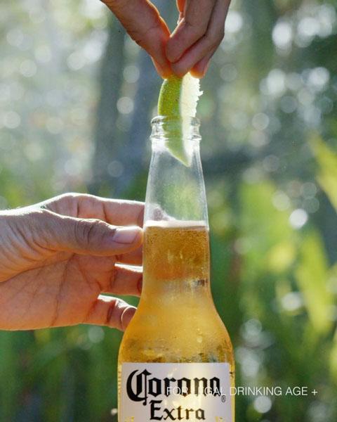 コロナ ビール 由来