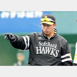 ソフトバンク平石洋介一軍打撃コーチ(C)日刊ゲンダイ