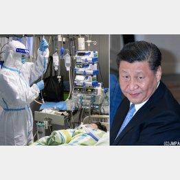 新型コロナウイルスによる肺炎で治療を受ける患者(左)と習近平国家主席(C)新華社=共同