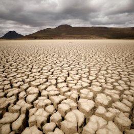 科学者が警告 地球温暖化とウイルスの関係にスポットが