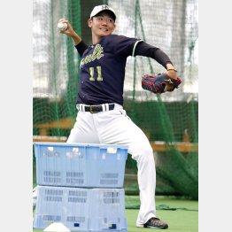 高津新監督はブルペン入りを明言(奥川)/(C)日刊ゲンダイ