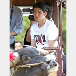 ナイキのTシャツを着て水牛観光を楽しむ佐々木(C)日刊ゲンダイ