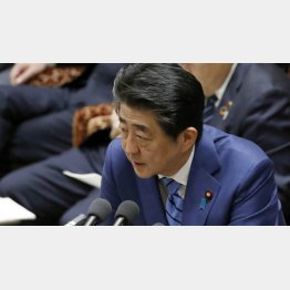 「誠に遺憾だ」って…(31日、衆院予算委で答弁する安倍首相)/(C)日刊ゲンダイ