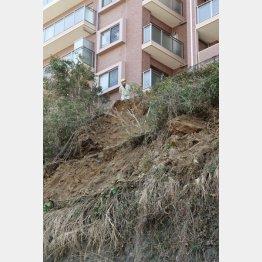 崩落した神奈川県逗子市の道路脇の斜面。女子高生が巻き込まれ亡くなった(C)共同通信社