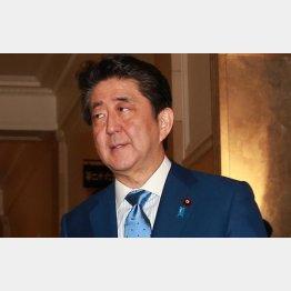 安倍首相の地元・老舗旅館の「割安会費」新年会、なぜ中止に?(C)日刊ゲンダイ