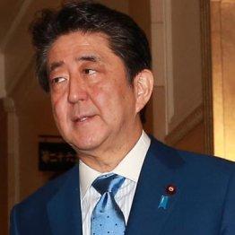 """やっぱり? 安倍地元高級旅館の新年会中止に""""第2の桜""""疑惑"""