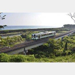 太平洋に沿って走る土佐くろしお鉄道の列車(C)共同通信社