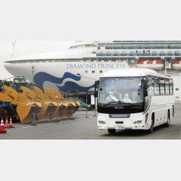 防護服でクルーズ船の乗客移送(C)共同通信社