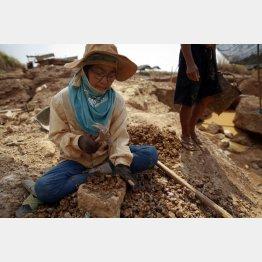 タイのチャットリー金鉱の近くで金(ゴールド)を集めて採る家族(C)ロイター/Damir Sagolj (THAILAND - Tags:BUSINESS)