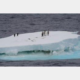 南極(C)新華社/共同通信イメージズ