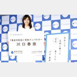 川口春奈(C)日刊ゲンダイ