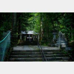 赤城山の中腹にある三夜沢赤城神社(提供写真)