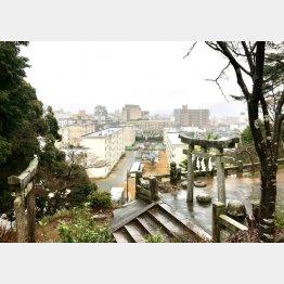 権現山から温泉街を見下ろす(C)日刊ゲンダイ