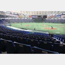東京ドームでのオープン戦が無観客試合に(C)日刊ゲンダイ