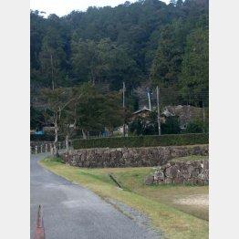 城の石垣が残る安土城(C)日刊ゲンダイ