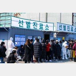 韓国の検査体制は充実している(大邱医療センター前に検査で並ぶ人々) (C)UPI/ニューズコム/共同通信イメージズ
