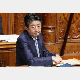 コロナ対策は「評価しない」が50%、桜疑惑にIR、官邸人事にも「NO」/(C)日刊ゲンダイ