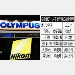 オリンパスとニコン(C)日刊ゲンダイ