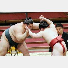 組み合う炎鵬(右)と豊山(C)日刊ゲンダイ