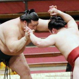 豊山がレスリング相撲で炎鵬破る 熱戦も観客不在の寂しさ